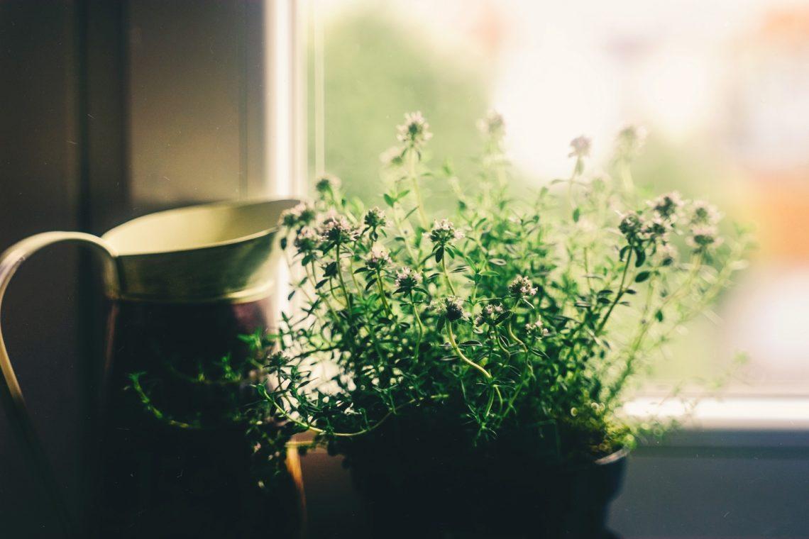 leve mer miljøvennlig hjemme